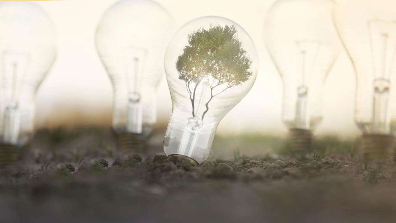 Y por fin llegó la Ley de Cambio Climático y Transición Energética… No hay más tiempo que perder